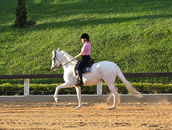 Mary rides a beautiful Mangalarga Paulista white mare.