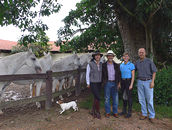 Mary with Paulo Arantes, and owner/breeder Marcelo Baptista de Oliveira and his wife Sophia of Haras Maripa with several of their Mangalarga Marchardo foundation mares